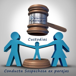 custodias divorcios detectives